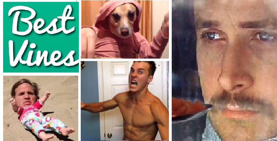 Greatest Vines 2013 Video Compilation (Viral Video)