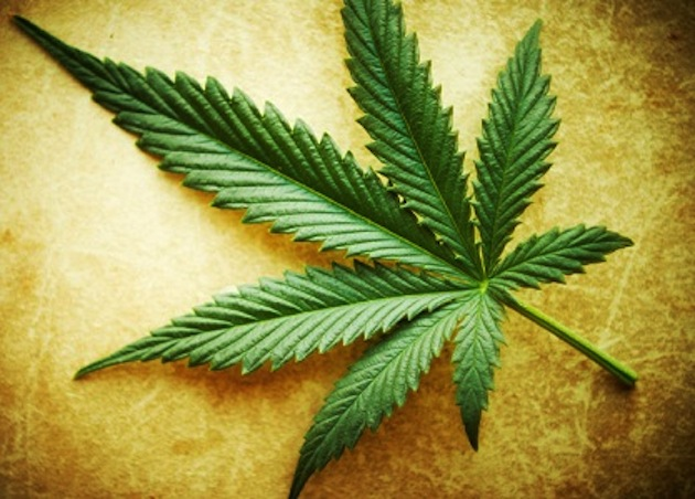Uruguay To Sell Legal Marijuana For $1 Per Gram Says Official