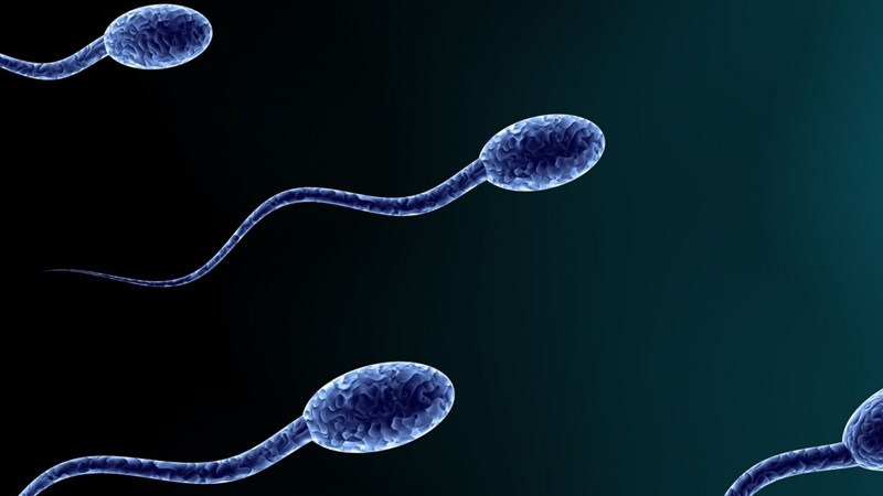 Semen 'Is Good For Your Health And Helps Fight Depression